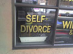 Self-divorce, divorce legal advice